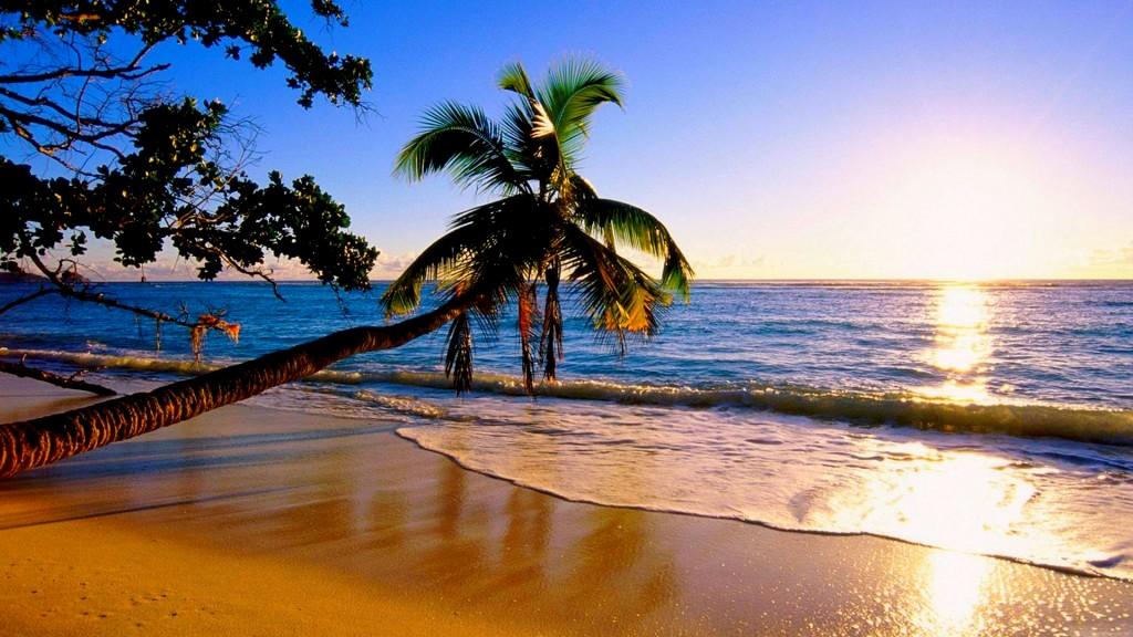 beach-paradise-224959