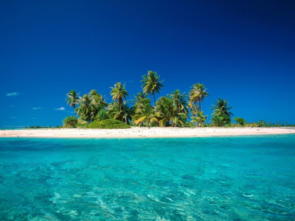 coconut-island