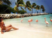 Aruba, One Happy Island